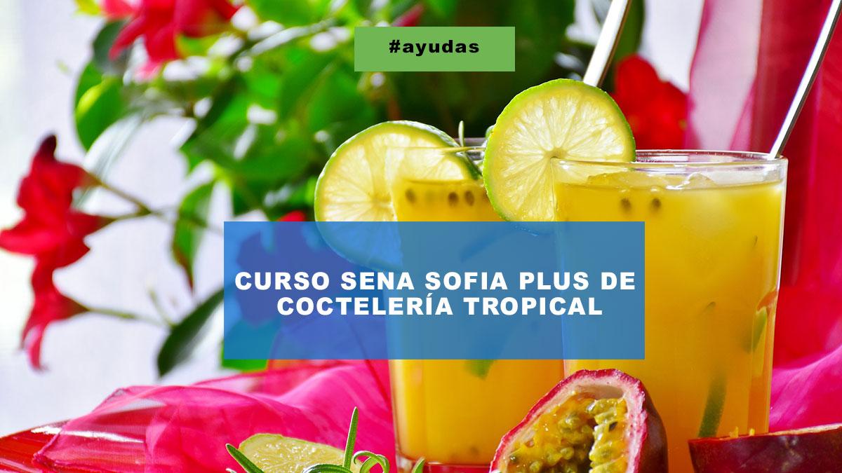 Curso Sena Sofia Plus de Coctelería Tropical
